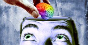IN*Gros plan sur main déposant cerveau coloré dans crâne d'un homme